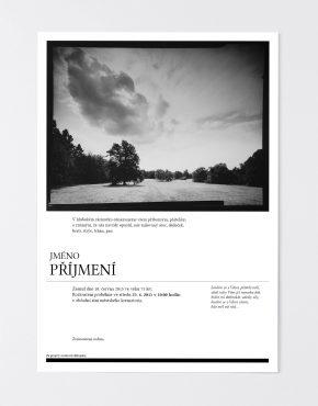 online_parte_ptacek_10