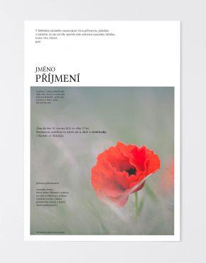 parte-online-obraz11