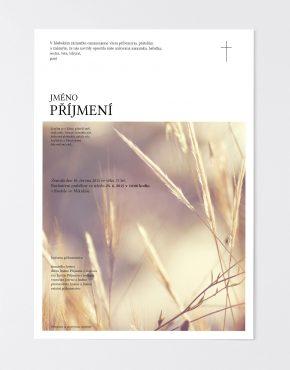 parte-online-obraz12