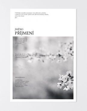 parte-online-obraz14