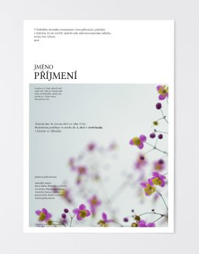 parte-online-obraz15