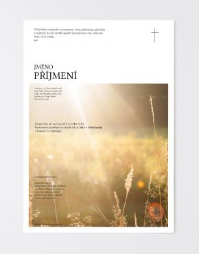 parte-online-obraz6